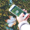 smartphone 1031273 1280